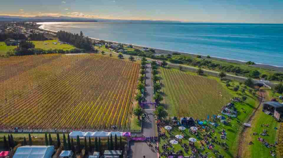 hawkes bay international marathon