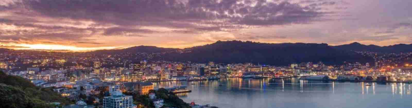 Mt Victoria wellington view sunset